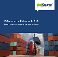 b2b-commerce-whitepaper