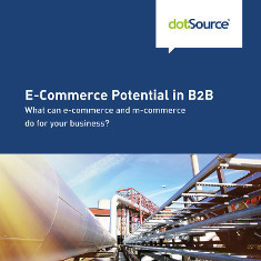 E-Commerce-Potential-in-B2B WP EN