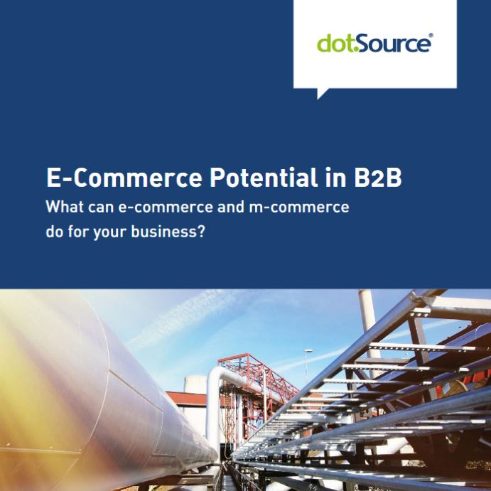 dotsource-white-paper-e-commerce-potential-in-b2b
